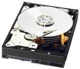 Western Digital WD3001FYYG 3000GB Hard Drive
