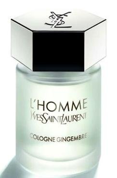 Yves Saint Laurent L'Homme Gingembre 100ml EDC Men's Cologne