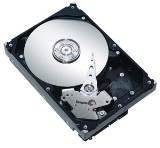 Seagate ST3500630AS 500GB Hard Drive