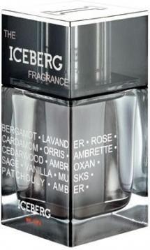 Iceberg The Iceberg Fragrance 100ml EDT Men's Cologne
