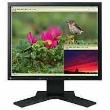 Eizo FlexScan S1721 17inch LCD Monitor