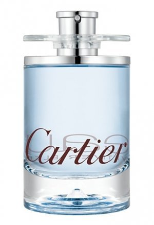 Cartier Eau De Cartier Vetiver Bleu 100ml EDT Unisex Cologne