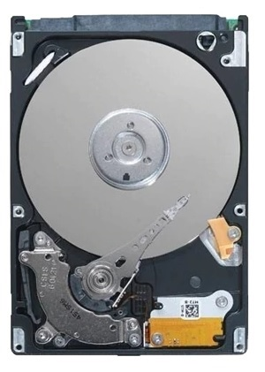 Dell 55RJT SAS Hard Drive