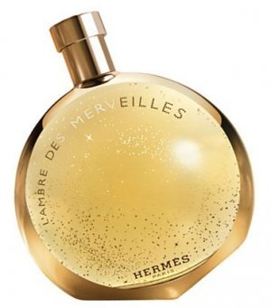 Hermes LAmbre Des Merveilles 100ml EDP Women's Perfume