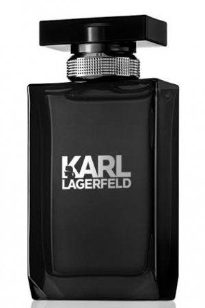 Karl Lagerfeld Pour Homme 50ml EDT Men's Cologne