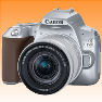 New Canon EOS 250D Kit 18-55 STM Digital Cameras Silver (FREE INSURANCE + 1 YEAR AUSTRALIAN WARRANTY) - Visit Us For More Color Variant
